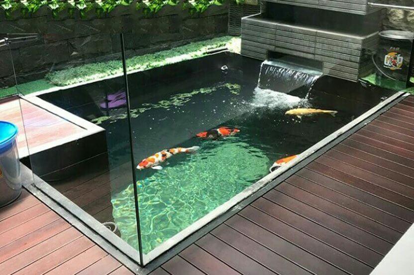 31 Berbagai Desain Kolam Ikan Minimalis Untuk Rumah
