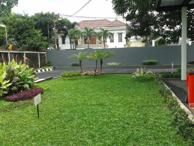 Jenis taman minimalis